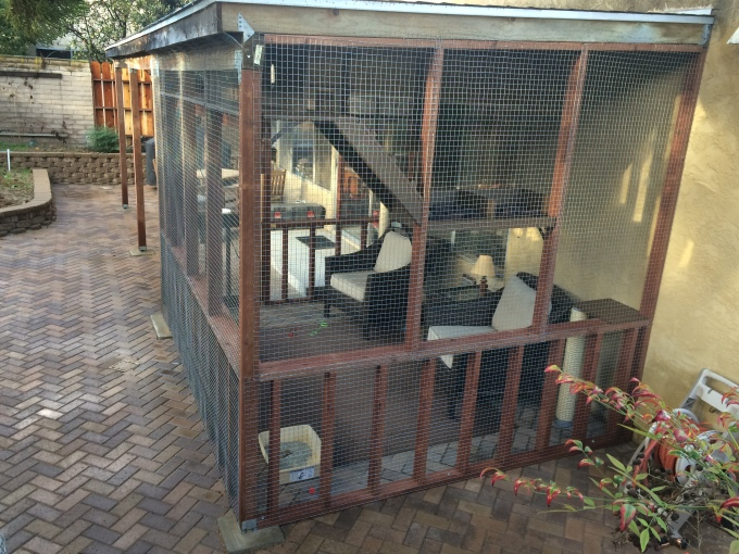 The catio makes an elegant (well, at least consonant) outdoor space where we can enjoy our cats and the outdoors together. Is it cocktail hour?