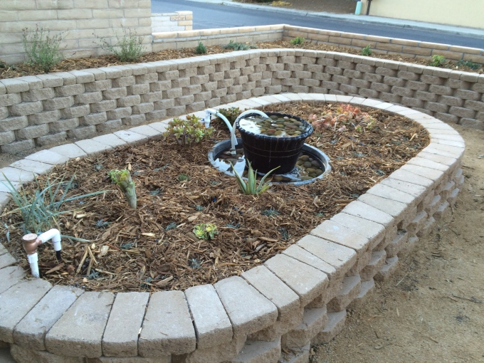 The center planter will be a succulent garden. All drought tolerant!